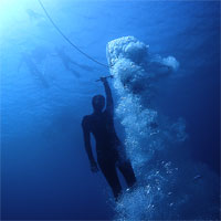 Freediving master class: NLT / VWT by Pim Vermeulen