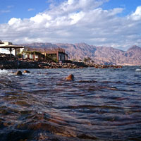 Immersion – the freediving center and school in Dahab, Red Sea, Egypt